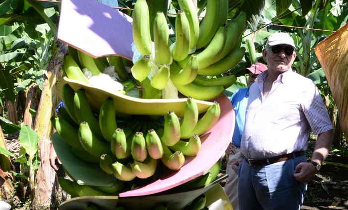 Piero Coen/Empresario de Chinandega ,Posa en su casa y Bananera.Foto Uriel Molina/LA PRENSA Exportadores. Magazine.