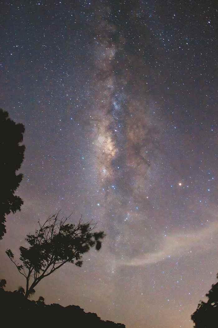 Foto de Osiris Castillo.