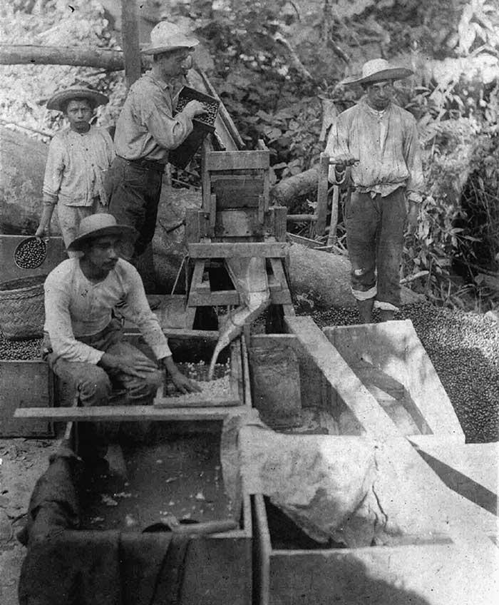Otto Kühl creó la primera despulpadora de café