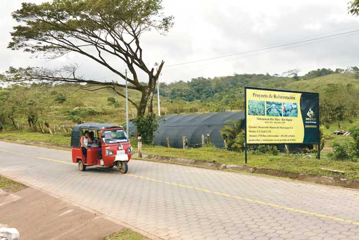 Entre La Libertad y Santo Domingo se puede observar parte del proyecto de reforestación