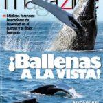 Magazine 154