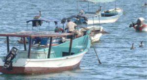 En aguas nicaragüenses transitan ballenas y delfines muy cerca de la costa