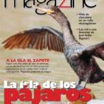 Magazine N° 60