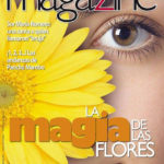Magazine N° 183