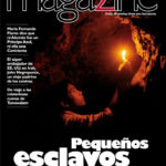 Magazine N° 11